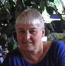 Marian van der Meijde;