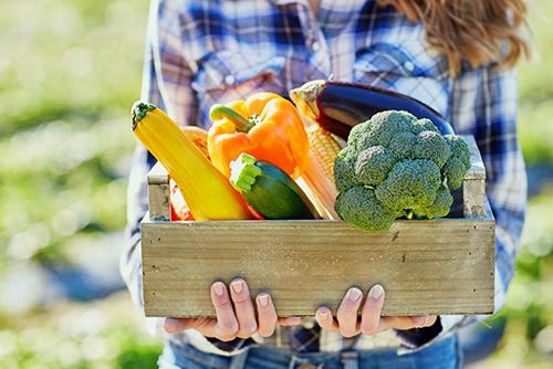 Trekasse full av friske grønnsaker