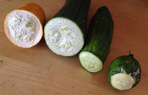 Fire forskjellige grønnsaker