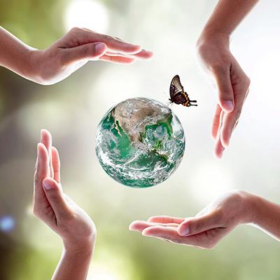 hender, klode og sommerfugl